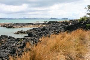 Risultato immagini per black sands muriwai 300x200