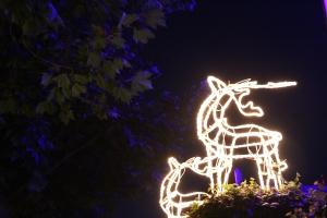 Glowing reindeer, Franklin Road