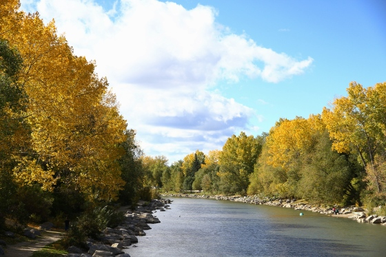 Autumnal Bow River