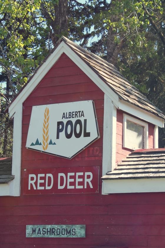 RedDeer.AlbertaPool