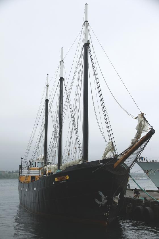 TallBlackShip.Halifax